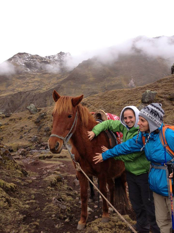 Peru: Horsing around